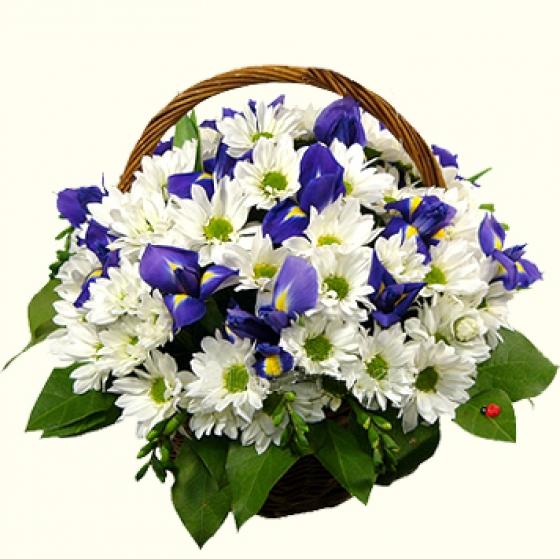 Корзиночка из живых цветов.