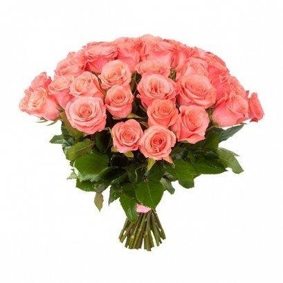 Роза «Amsterdam» Эквадор