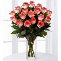 Роза «Blush»