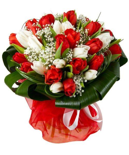 Букет из красных и белых тюльпанов