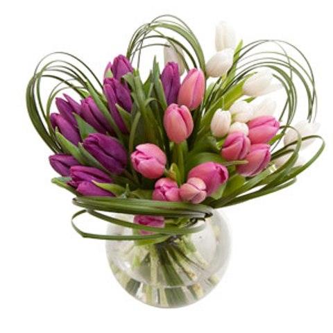 Тюльпаны 3 цвета.