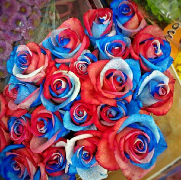 Розы на 9 Мая