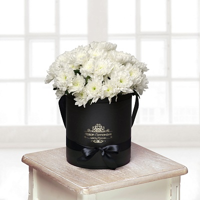 Черная коробка с белой хризантемой